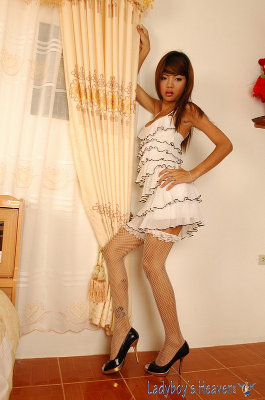 Small, skinny, cute Asian ladyboy Nadia Love - LbGuns.com